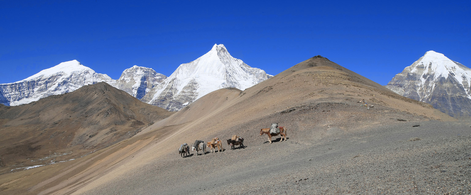Thutop Tours and Treks